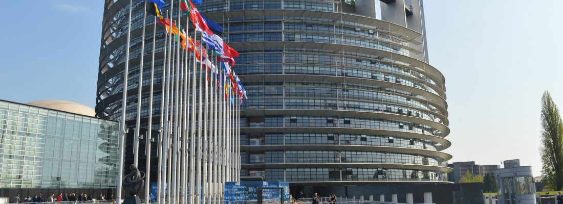 Photograph of the European Parliament building in Strasbourg with European country flags outside